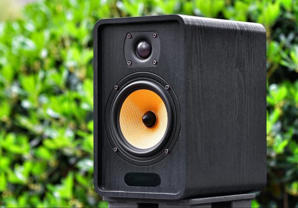 Quality Portable QE520 Active Bookshelf Hifi Speaker Multimedia Karaoke for sale