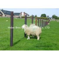 China Hot Dipped Galvanized Field Fence , High Tensile Woven Wire Fence Rolls wholesale