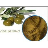 China Organic Olive Leaf Extract For High Blood Pressure ,  Pure Olive Leaf Extract Super Strength wholesale