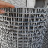 China Welded mesh factory (stainless steel welded wire mesh/Galvanized welded wire mesh) wholesale