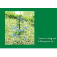 China Plant Support Hoops / Garden Spiral Plant Support Black Color For Flower Support wholesale