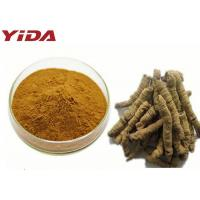 China Enhance Sexuality Morinda Officinalis Extract Raw Powder To Strong Muscle And Bone wholesale