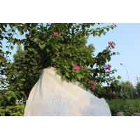 China Durable Recycled Light Weight Breathable Agriculture Nonwoven Fabric  for Landscape wholesale