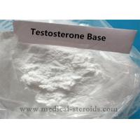 Test B Anabolic Testosterone Based Steroids For Bodybuilding , 99% Purity