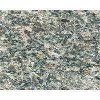 China Caledonia Granite Marble Stone / Natural Stone Granite Countertops wholesale
