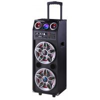 China Pro Audio Bluetooth Microphone PA Disco Light Portable Party Speaker System wholesale