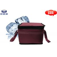 China Thermal Insulation Cold Chain Packaging Cooler Bag 0.9L For Travel Insulated Food Bags on sale