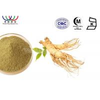 China Herb Ginseng Root Extract 10% Ginsenoside Powder Oxygen Resistance For Cosmetics Field on sale