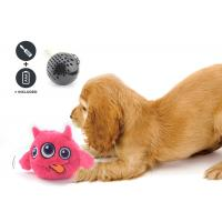 China Non Toxic Dog Entertainment Toys , Indoor Plastic Material Pet Dog Toy wholesale
