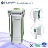 China cryolipolysis machine slimming wholesale