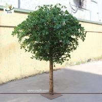 China UVG GRE024 Wholesale green artificial money tree plant for restaurant decoration 6ft high on sale