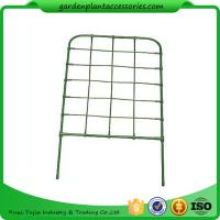 China Green Color Garden Flower Trellis wholesale