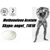 China Muscle Growth Primobolan Steroids Methenolone Acetate powder primobolone 434-05-9 wholesale