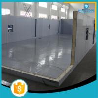 China Fire Proof Modular Freezer Cold Room Perfect Heat Insulation For Frozen Fish wholesale