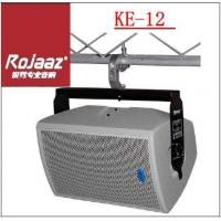 China 12 Paper Cone Woofer 300W Professional Karaoke Speaker Equipment With M8,M6 Rigging Points wholesale
