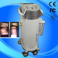 Fat / Cellulite Reduction Power Assisted Slimming Beauty Equipment With Oil Free Vacuum Pump