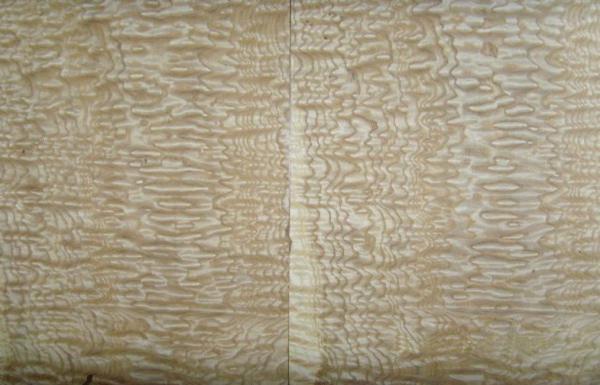Zebra Sheets Images