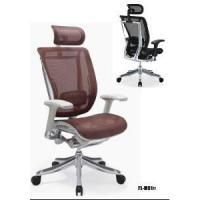 China Mesh Chair-Ergonomic Chair-Office Chair (FL-M01#) on sale