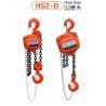 China vital chain hoist wholesale