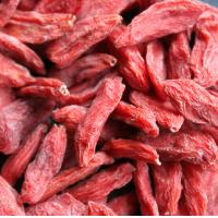 China 2014 New Crop Medlar Dried Wolfberry Fruit / Goji Berry Company wholesale