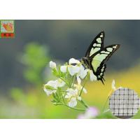 China Anti - Butterfly Garden Mesh Netting For Protect Crops And Vegetables 40g/Sqm wholesale