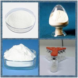 China Droga CAS 637-58-1 del analgésico del ácido clorhídrico de Pramoxine/del clorhidrato de Pramocaine wholesale