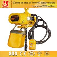 China Electric chain hoist/small electric pulley hoist/electric 300kg chain hoist wholesale