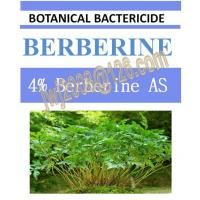 China botanical fungicide, 4%Berberine AS, plant extract on sale