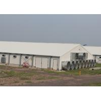 China Pre Engineered Steel Structure Poultry House Chicken Housing Structures wholesale