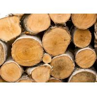 China Romanian Beech Wood Timber Supplier on sale