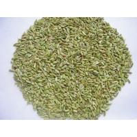 Gansu excellent products Anise