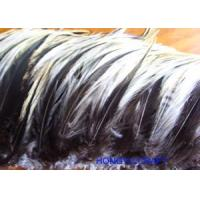 China FEATHER ITEMS Product HF082 [Order it!] wholesale