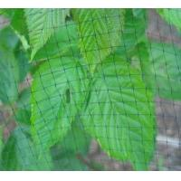 China Wire Mesh Fence Garden Netting wholesale