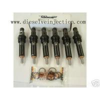 China Fuel Injector fuel injector wholesale