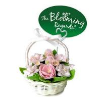 China Blooming Regards - Rose collection wholesale