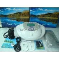 China ion cleanse detox foot spa DM101 wholesale