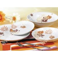 China Cup and Saucer Home>> 19pcs coupe dinner set wholesale
