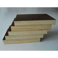 China 12mm/15mm/18mm marine plywood on sale