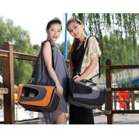China Pet Airline Carrier wholesale