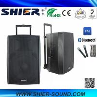 China 15 Inch 65W Class AB AK15-308 Best Trolley Rechargeable USB Speakers For Dancing wholesale