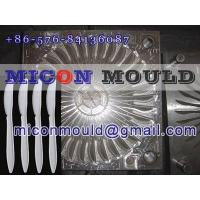 China cutlery mold wholesale