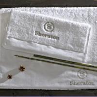 China Deluxe Hotel Bath towel wholesale