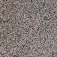China Forest Green Granite Stone wholesale