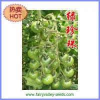 Buy cheap Green Cherry Tomato Seeds Round Shape 30-40g - Green Pearl from wholesalers