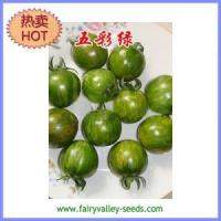 Buy cheap Multicolor tomato seeds - Multicolor Green middle early mature 35g from wholesalers