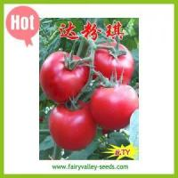 Buy cheap Friendship Big pink tomato seeds - Super pink angel from wholesalers