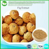 China Hot Products Fig extract wholesale
