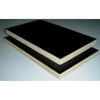 China 18mm Black Film Faced Birch Plywood wholesale