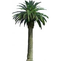 Artificial tree Artificial Canary date palm tree