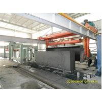 China Aerated autoclaved concrete block machine (AAC) line on sale